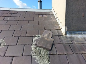 slate roof repairs needed Elsternwick