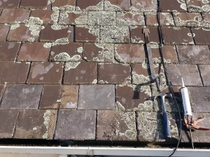broken roof slate repaired over the wall Melbourne